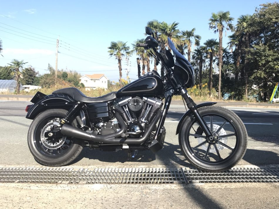 2010FXDL